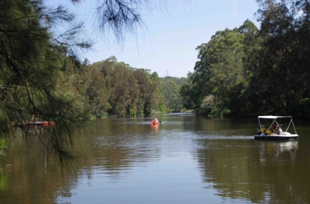 The Lane Cove River, upstream of the weir